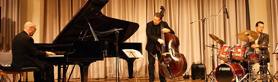 Foto Lucas Heidepriem Trio in Emmendingen am 10. November 2011
